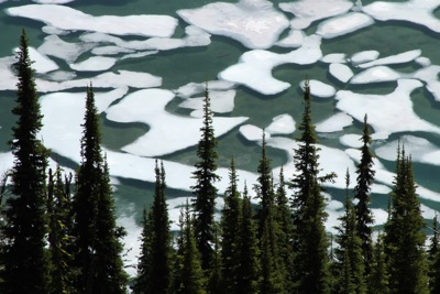 Summer Ice on Alpine Lake, Jeremy Roberts, Conservation Media