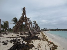 Evidence of Impact of Hurricane Sandy in the Bahamas