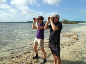 Biologists, Stephanie Egger and Todd Pover scoping out the island of Eleuthera for piping plovers.