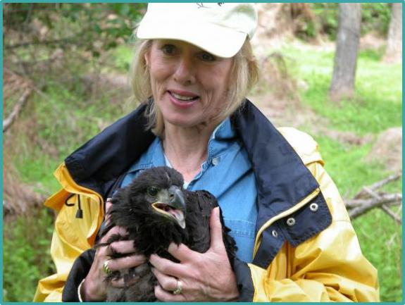 In founding Conserve Wildlife Foundation of New Jersey, past Women & Wildlife honoree Linda Tesauro helped to ensure the protection of eagles and other rare wildlife.