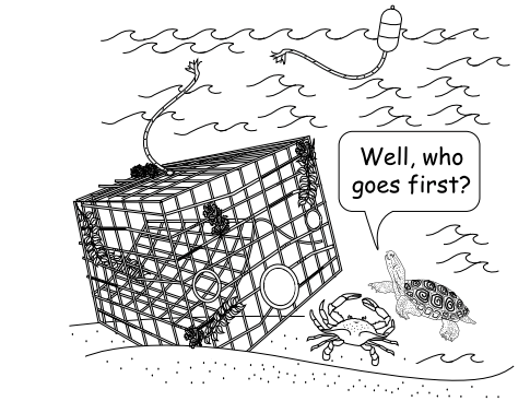 "Image by: Jessie Peter (2009) ""The Educator's Guide to Marine Debris"""