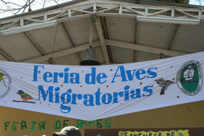 Migratory Bird Festival photo by Kelly Triece