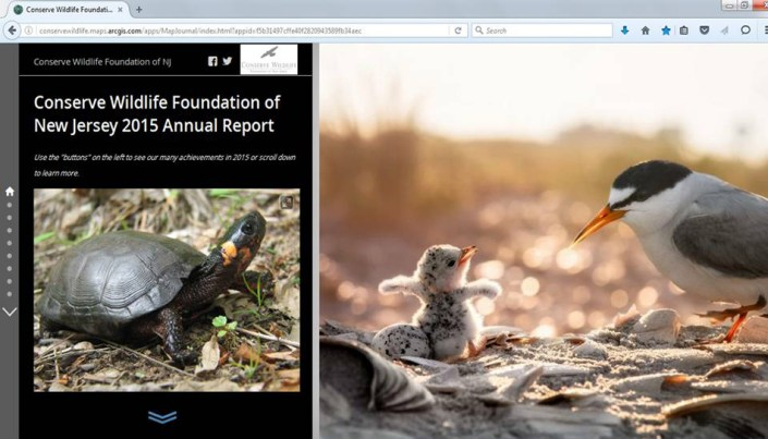 2015 Conserve Wildlife Foundation Annual Report.
