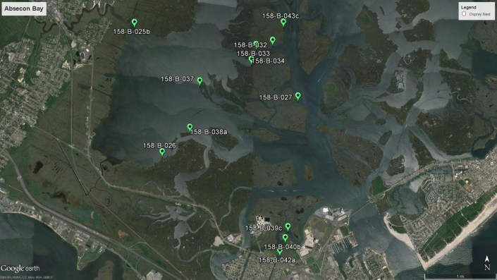 Map of nests that are in need of repairs in Absecon, NJ.