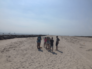 Campers spot some plovers and oystercatchers feeding in vernal pools along the inlet at Barnegat Light.