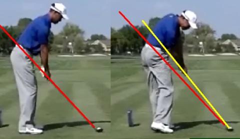 Tiger Woods Impact