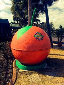 Sun Harvest Citrus