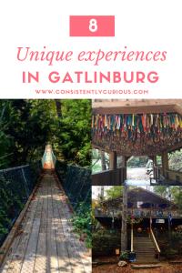 Unique Experience in Gatlinburg