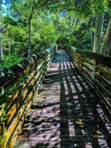 Hiking in Destin, FL