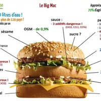 Un p'tit Big Mac ?