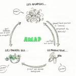 A.M.A.P : Associations pour le Maintient de l'Agriculture Paysanne