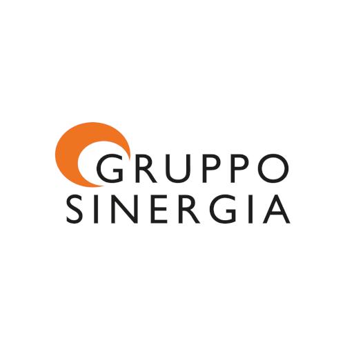 gruppo sinergia logo