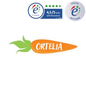 logo ortelia socio netcomm