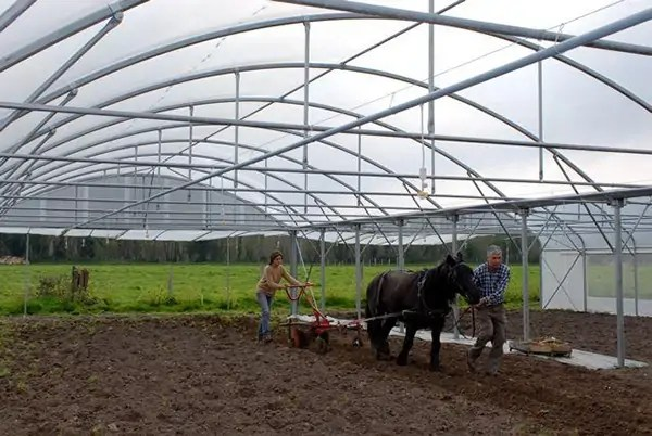micro-ferme-bec-helloin-agriculture-03