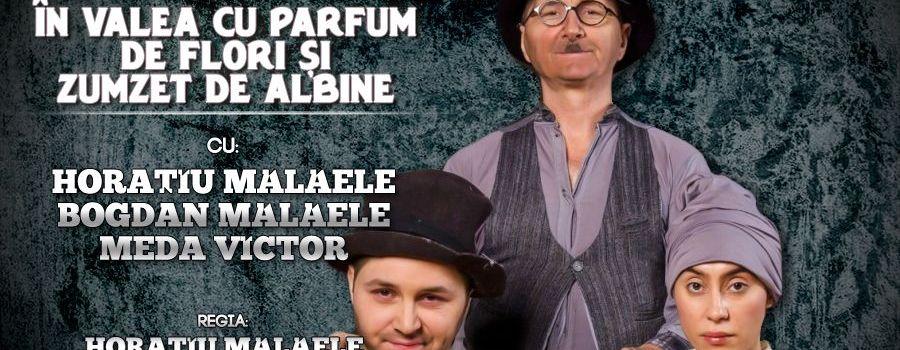 IN VALEA CU PARFUM DE FLORI SI ZUMZET DE ALBINE