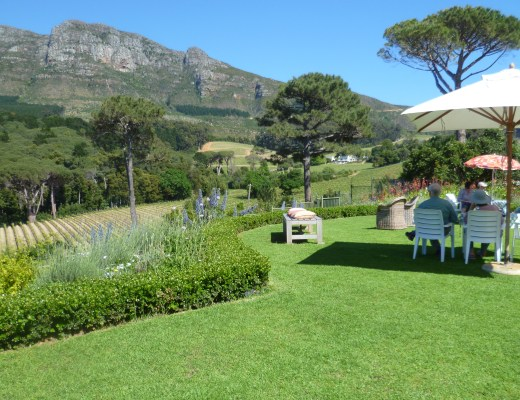 Water Oak Farm Constantia – Open Garden Day 2017