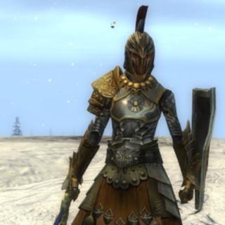 GW2: Warrior 'Squad Commander' Build | Constant Warfare