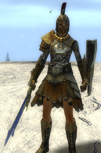 guild wars 2 warrior