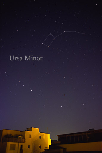Ursa Minor Constellation Myth Stars Facts Location