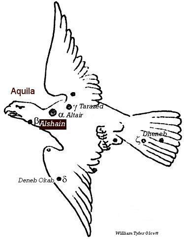 Aquila, Alshain in Constellation.jpg