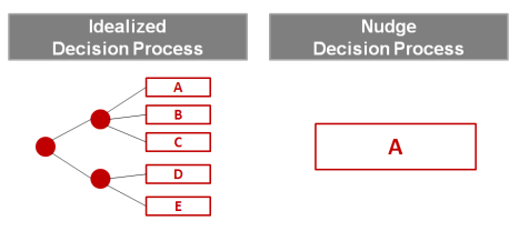 Nudge Decision Process