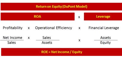 Consultantsmind DuPont Model
