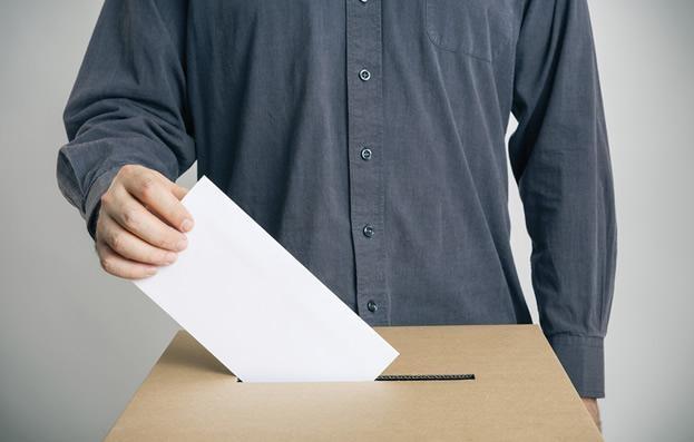 Leyes Electorales - Consulting Alaves