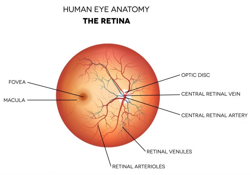 Retina Farmington | Retina Specialist CT | Consulting ...