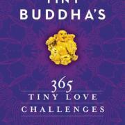 Pivotal Books - Tiny Buddhas 365 tiny love challenges