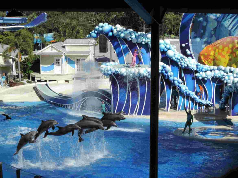 Blue Horizons - SeaWorld