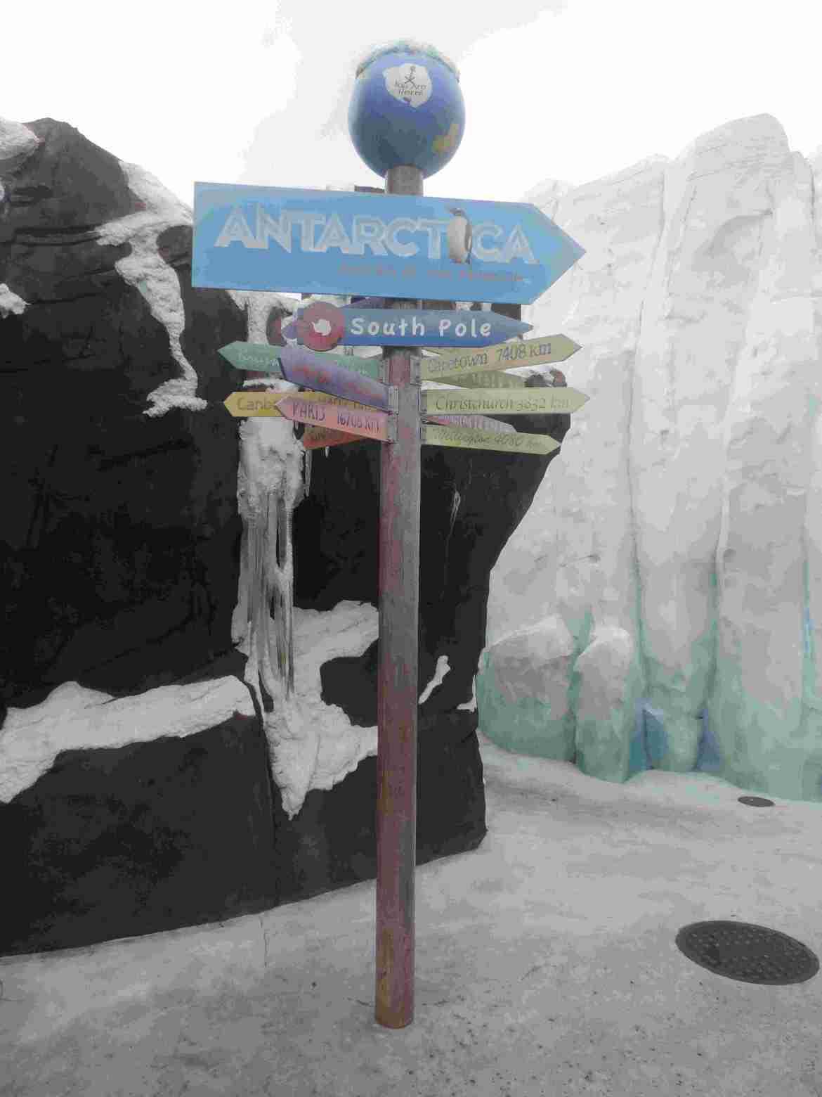 Antartica - Seaworld