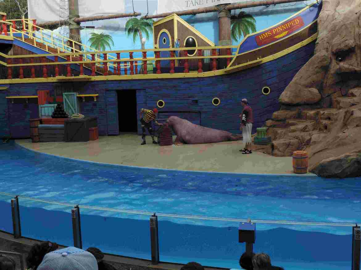 See Lion and Otter Theater - SeaWorld