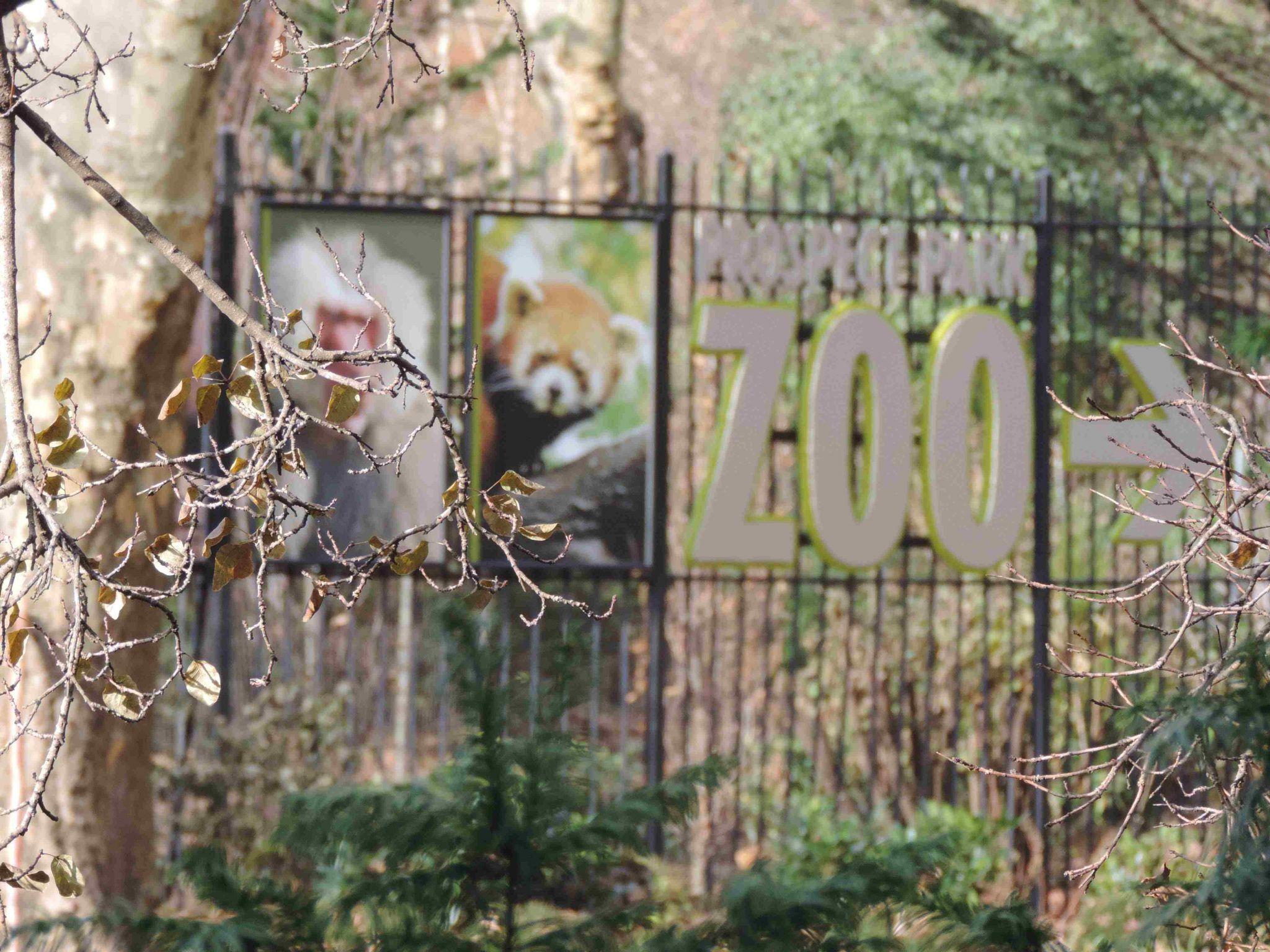 zoo de prospect park