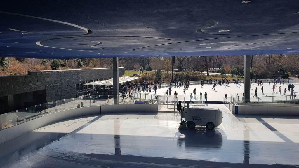Pista de patinaje Prospect Park 2