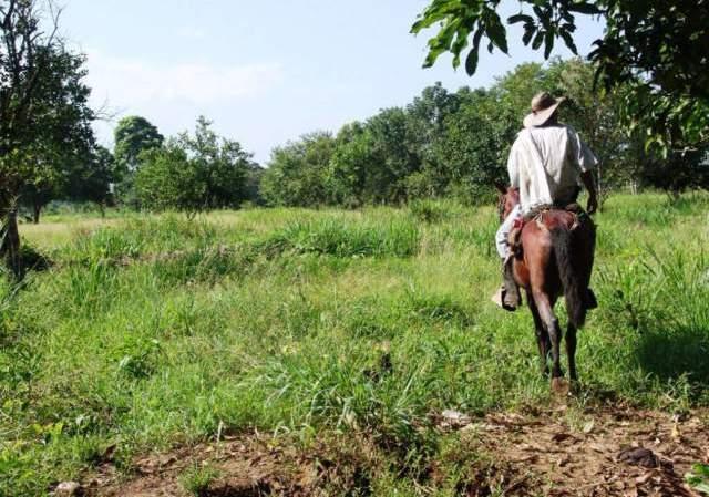 """Asesinato de Reclamante de tierras """"pudo haberse evitado"""""""