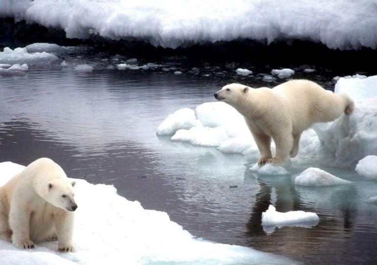 Los 8 desastres naturales que se darán si acuerdos de COP21 no son vinculantes