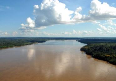 El precedente que marca el fallo sobre la Amazonía colombiana