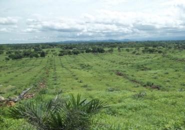 El 1% de propietarios ocupa más del 80% de tierras en Colombia