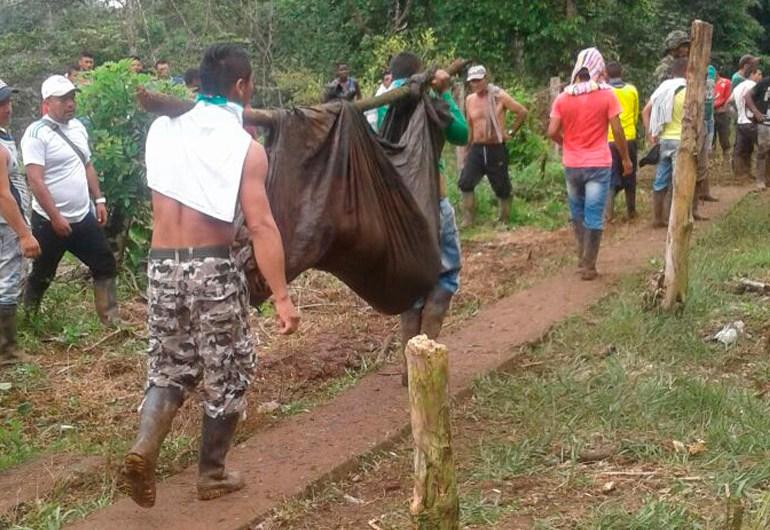9 personas muertas en medio de protestas por erradicación forzada en Tumaco