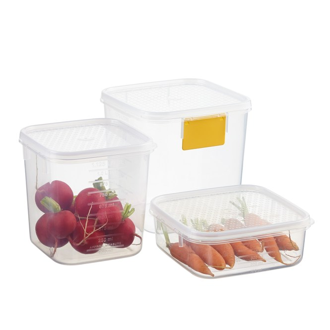 Decor Tellfresh Square Container With Cake Lifter 3 5l Chefs Complements