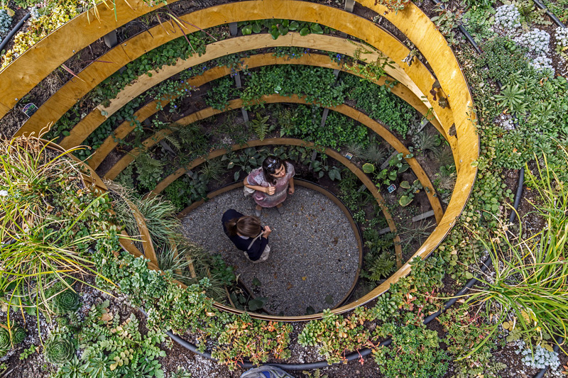 'The Infinite Green' by Adam Kalinowski