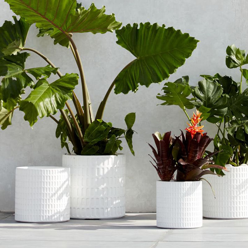 How To Make Your Balcony Awesome For Summer // Depending on the size of your balcony, you might want to add some planters with leafy palms and ferns in varying heights to create an inviting 'tropical feel.