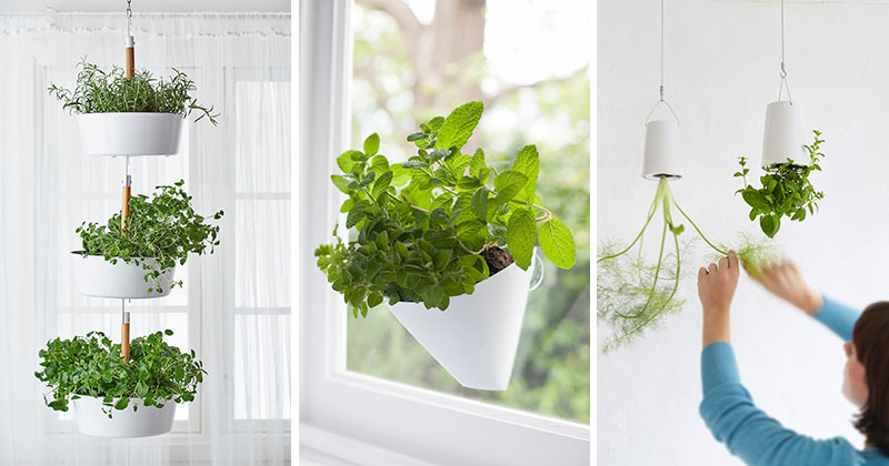 Indoor Garden Idea - Hang Your Plants From The Ceiling & Walls on Plant Hanging Ideas  id=41541