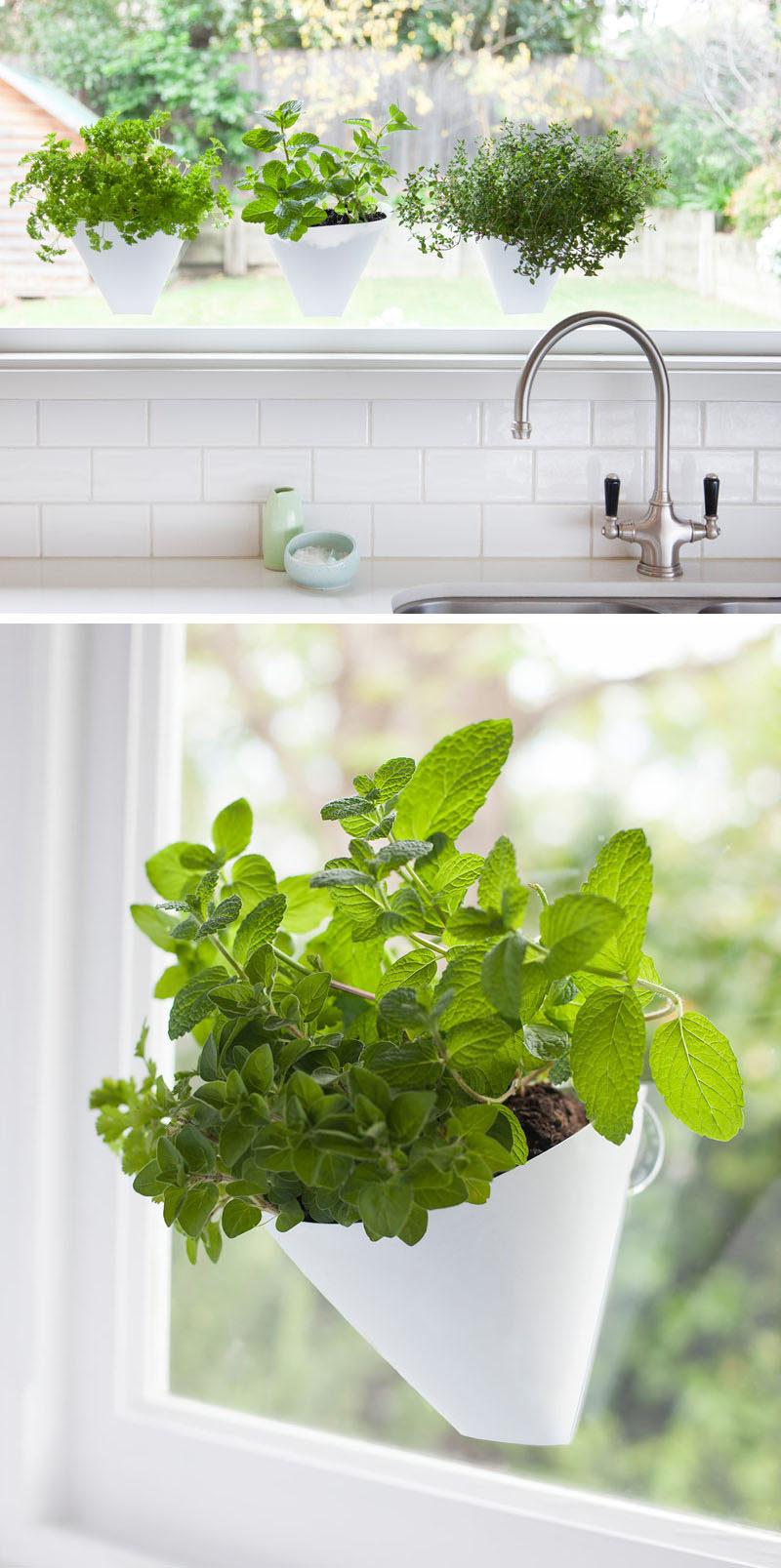 Indoor Garden Idea - Hang Your Plants From The Ceiling ... on Hanging Plant Pots Indoor  id=88343