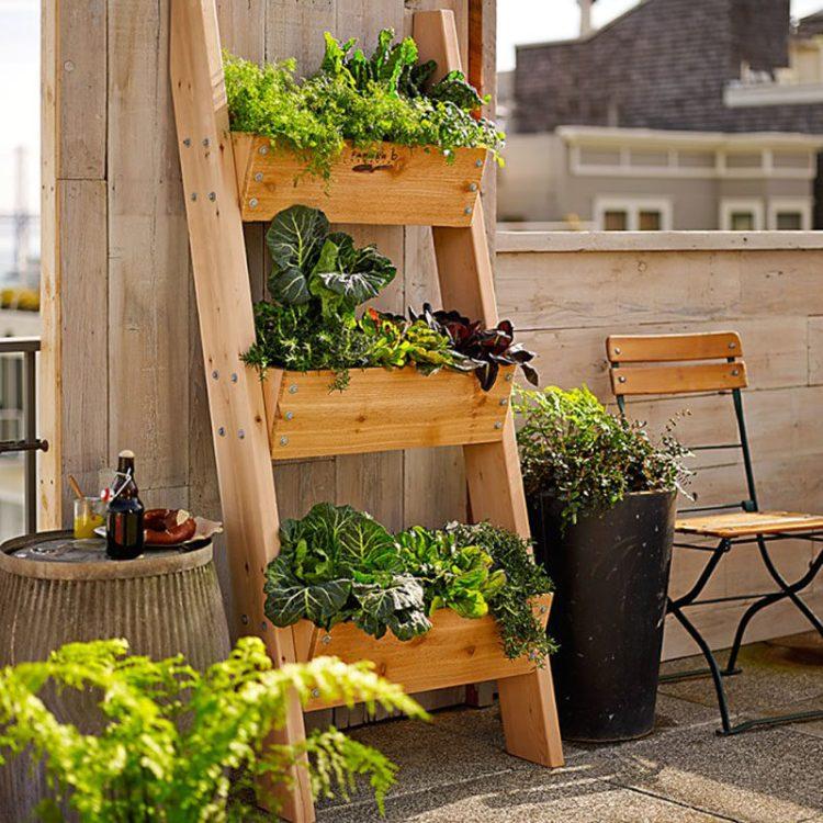 5 Vertical Vegetable Garden Ideas For Beginners