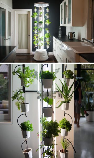 indoor vegetable garden ideas 5 Vertical Vegetable Garden Ideas For Beginners | CONTEMPORIST