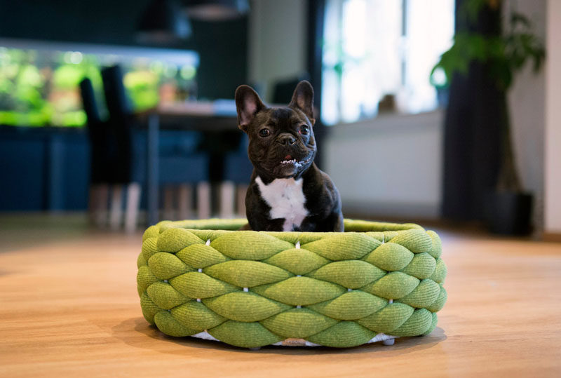 """Swiss design company Volentis GmbH, has designed """"LABONI"""", a collection of modern pet furniture and accessories, and as part of the collection, they created modern pet bed named RIVA."""