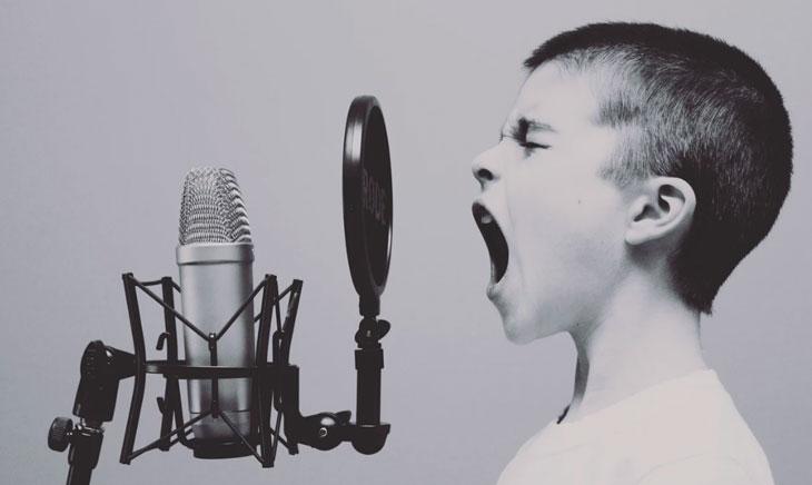 SEO 2019 Web vocal