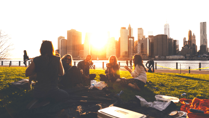 Go on a picnic with friends