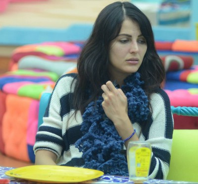 Bigg Boss 9 - Day 73 - Episode 73 - 3